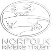 Norfolk Rivers Trust logo