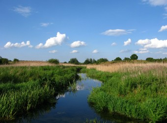 The River Nar at Castle Acre