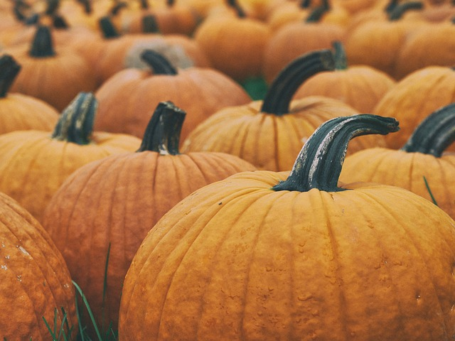 Frightening facts for a Halloween Friday